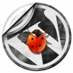 Vulnerabilidad en WordPress