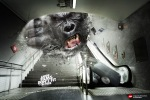 King-Kong short films