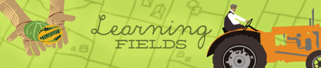 learning_fields_fad7a310b0488