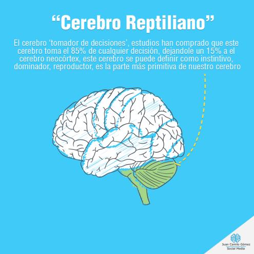 cerebro-reptiliano-juangomezsocialmedia