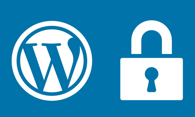 seguridad-en-wordpress.png